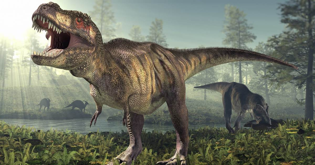 2.5 billion T. rex roamed Earth, but not all at once, study finds