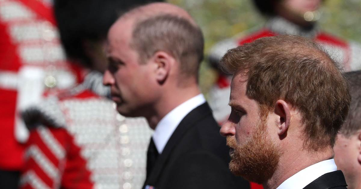 Harry and William together again a tonic for Brits mourning Prince Philip
