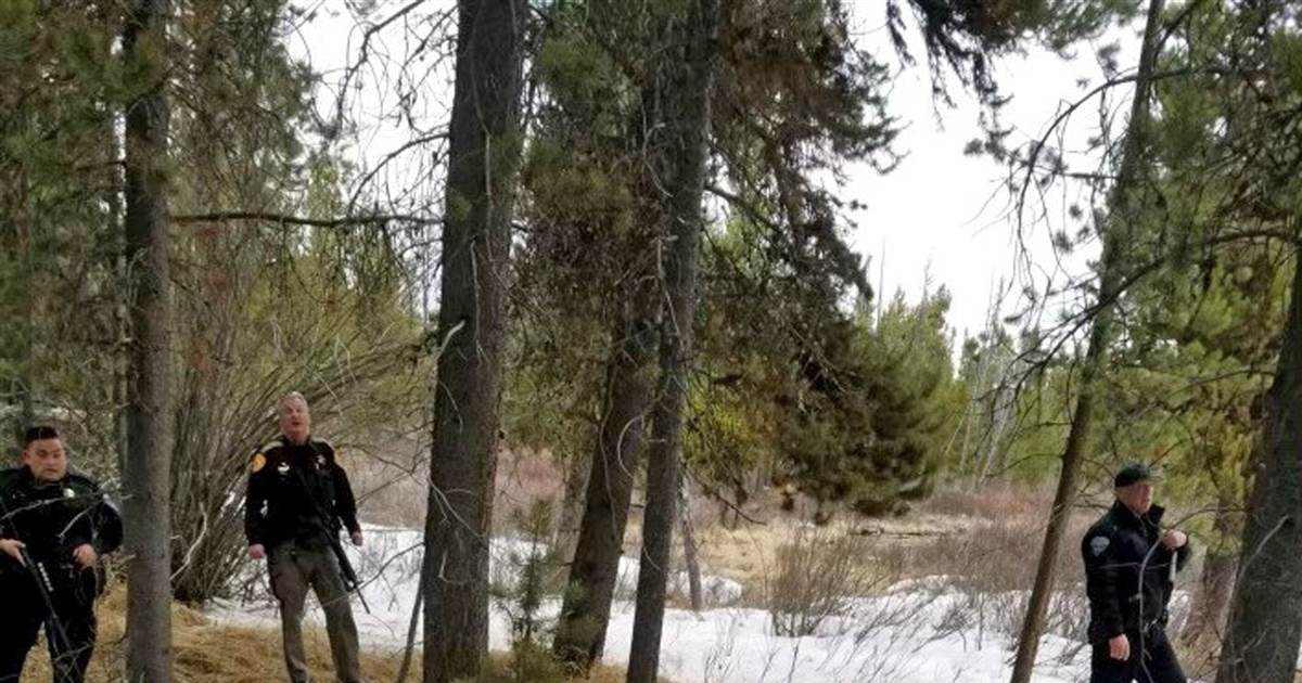 Montana backcountry guide dies after he was mauled by grizzly near Yellowstone