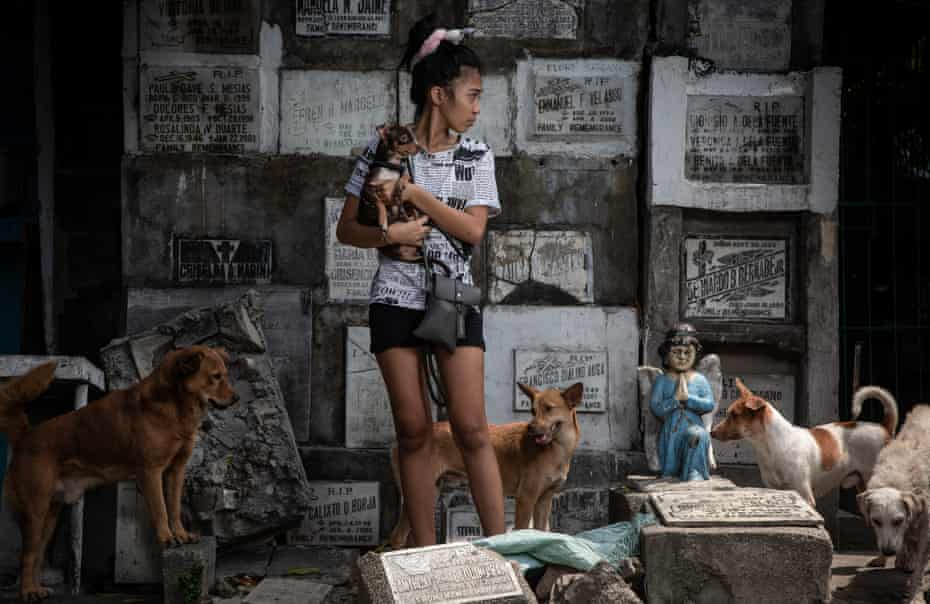 Honey,18, a graduating senior high student of Pasay East. She has eight dogs in her care and currently lives with her mom and dad in the cemetery.