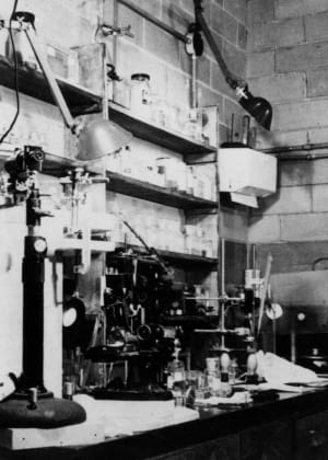 The Metallurgical Laboratory in Chicago, Illinois was the first laboratory set up to study pure plutonium.  Photo taken in 1942.