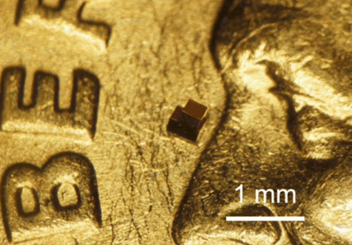 close up shot of milimeter-sized injectable chip