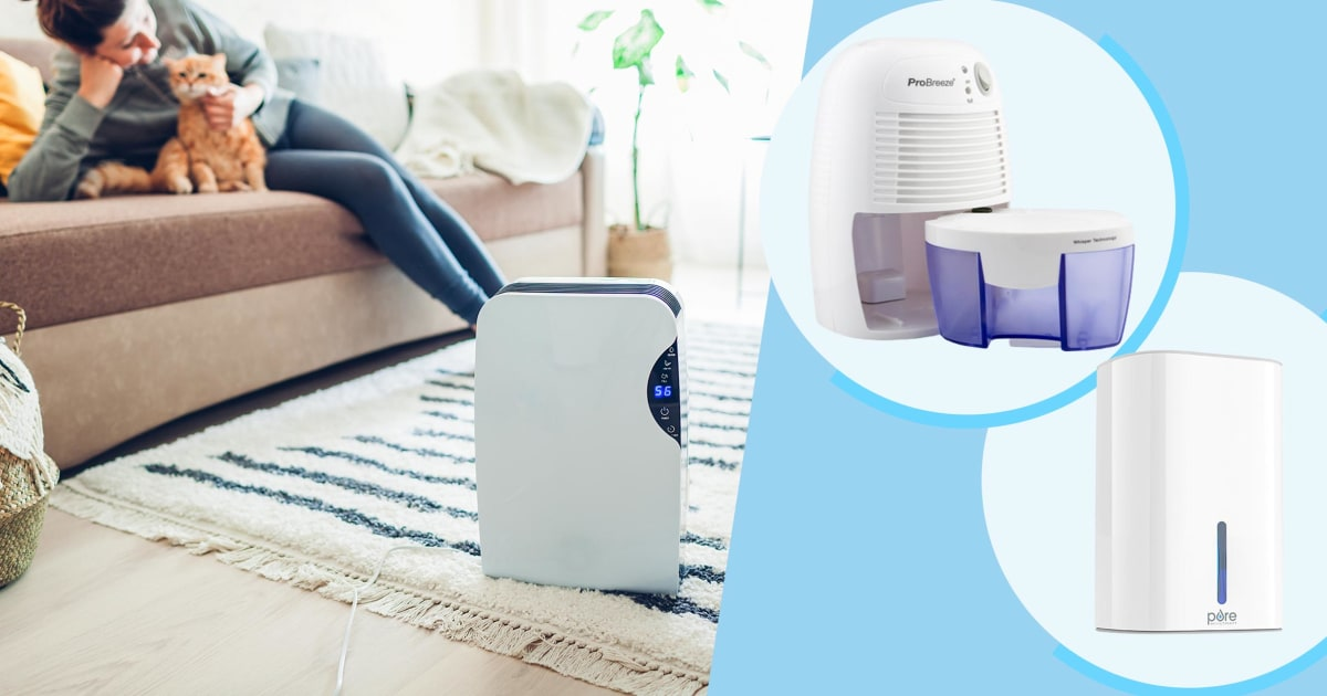6 best affordable dehumidifiers under $100 in 2021