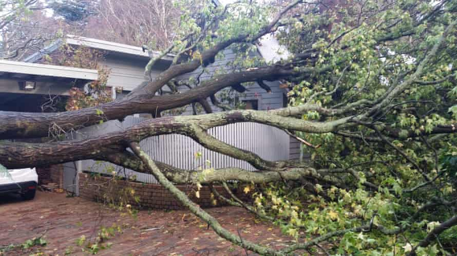 Rhonda and Mark Fergus say the sound of a huge branch smashing into their roof was 'like and explosion' during the recent floods and wild weather in Victoria.