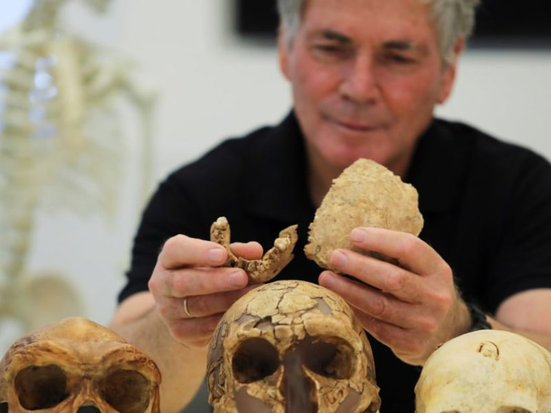 New early human discovered in 130,000-year-old fossils at Israeli cement site