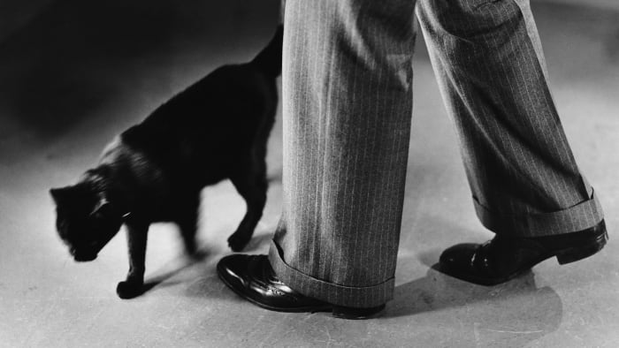 Black cat crossing the path of a man.